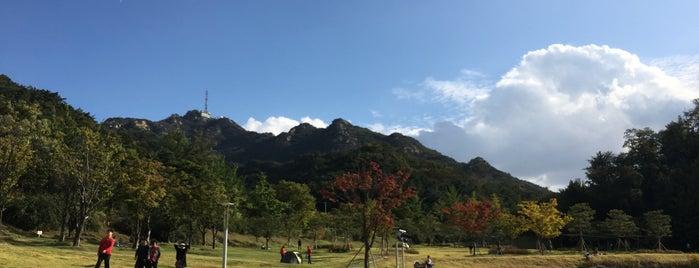 버들골 is one of Seoul Natl Univ.