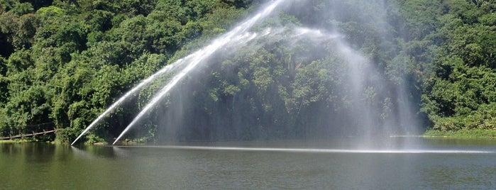 Lagoa da Saudade is one of Santos Cultural.
