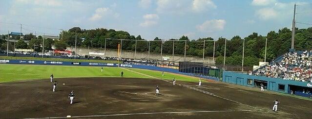 Fighters Kamagaya Stadium is one of Japan Baseball Studium.