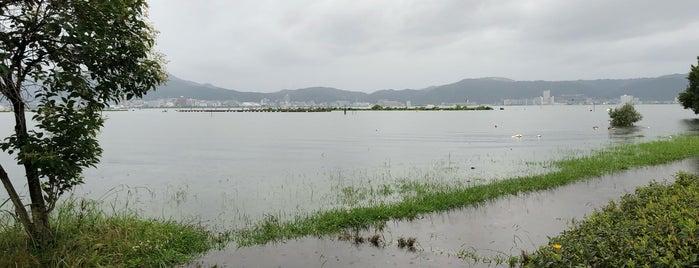 湖岸緑地 is one of 日本の都市公園100選.