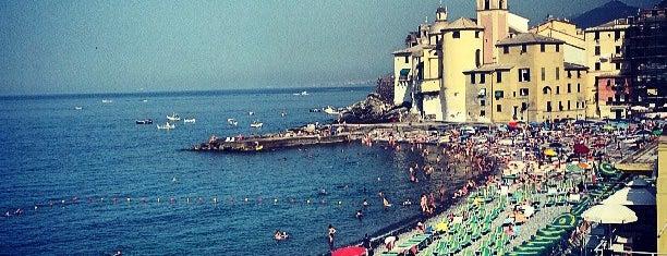 Spiaggia di Camogli is one of Beach.