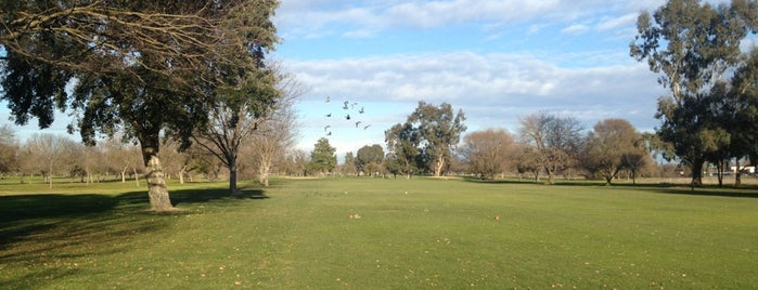 Haggin Oaks is one of Establishments to Frequent.