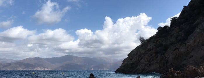 Plage de Ficajola is one of Corsica.