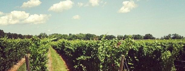 Fox Run Vineyards is one of New York State Wineries.