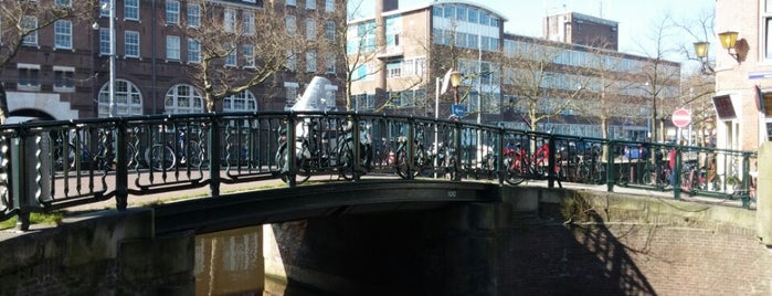 Brug 100 is one of Bridges in the Netherlands.