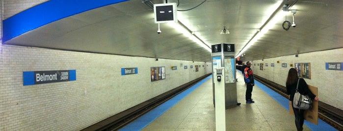 CTA - Belmont (Blue) is one of CTA Blue Line.