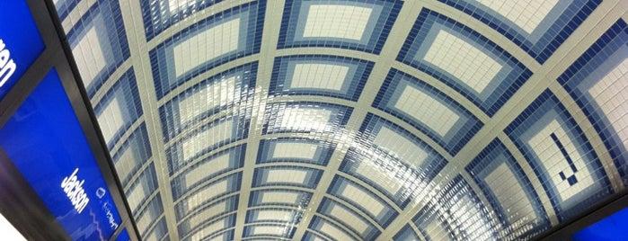 CTA - Jackson (Blue) is one of CTA Blue Line.