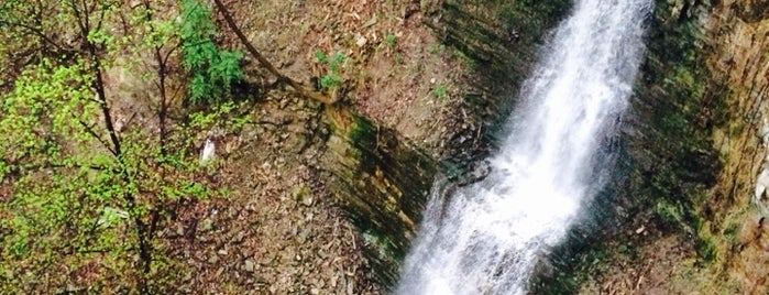 Cliffview Falls is one of Chasing Waterfalls.