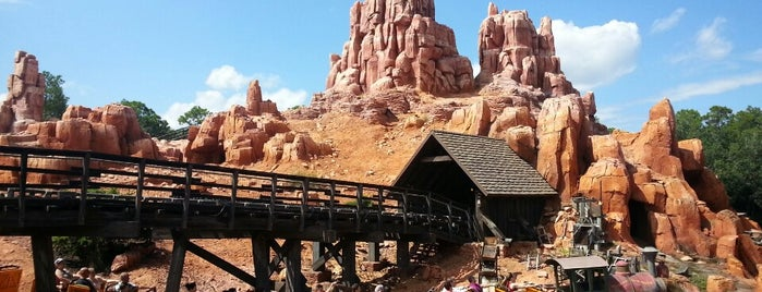 Frontierland is one of Walt Disney World.