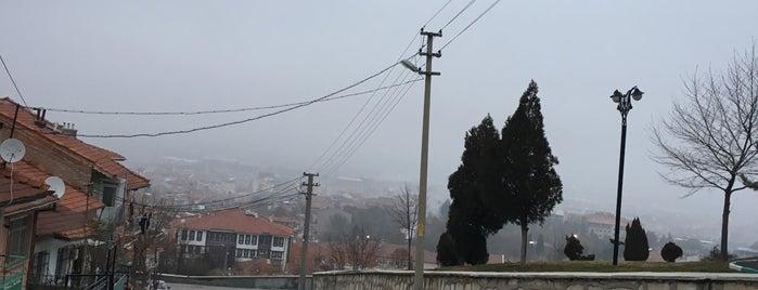 Hamidiye is one of Kütahya'nın Mahalleleri.