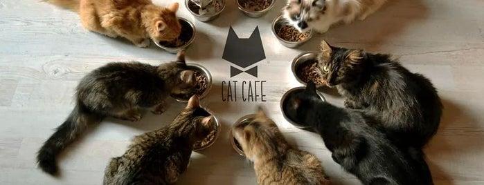 Cat Cafe / Kačių Kavinė is one of Coffeeholic.