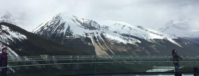 Glacier Skywalk is one of Fun.