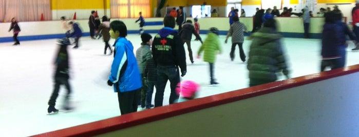 桐生スケートセンター is one of スケートリンク.