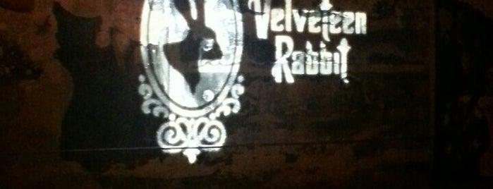 Velveteen Rabbit is one of For Las Vegas in June.