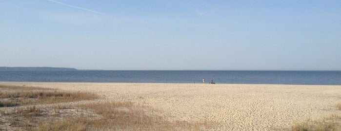 Cedar Point Beach is one of The Great Outdoors.