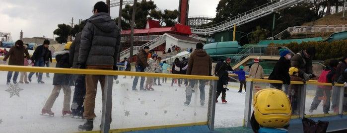 ひらかたパーク アイススクエア is one of スケートリンク.