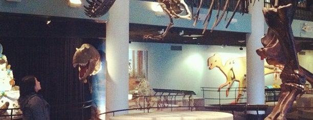 The Academy of Natural Sciences of Drexel University is one of Bucket List Places.