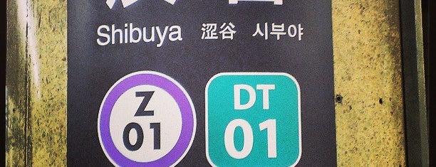 Den-en-toshi Line Shibuya Station (DT01) is one of 駅.
