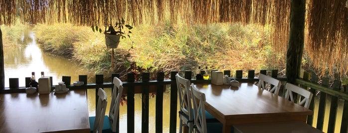 Yalıçapkını Restaurant is one of Cennet ve İlçeleri.