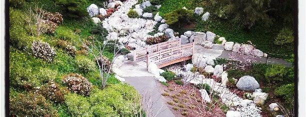 Japanese Friendship Garden is one of San Diego.