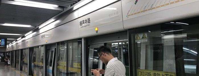 M. Yanggao Rd. Metro Stn. is one of Metro Shanghai.