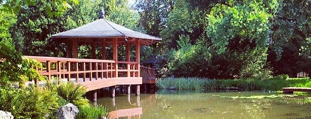 Ogród Japoński | Japanese Garden is one of Wroclaw-erasmus.