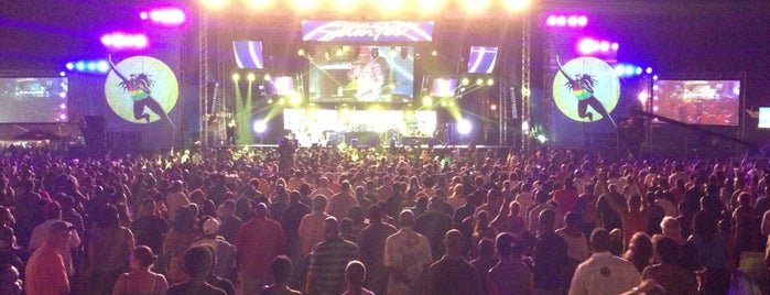 Reggae SumFest 2013 is one of Random.