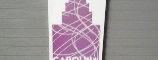 Carolina Ice Palace is one of my charleston places.