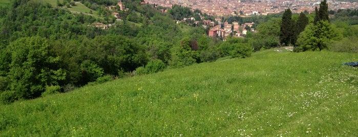 Villa Ghigi is one of Il verde a Bologna.