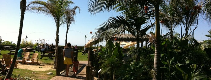 Beach Grill at Padaro is one of santa barbara favs.