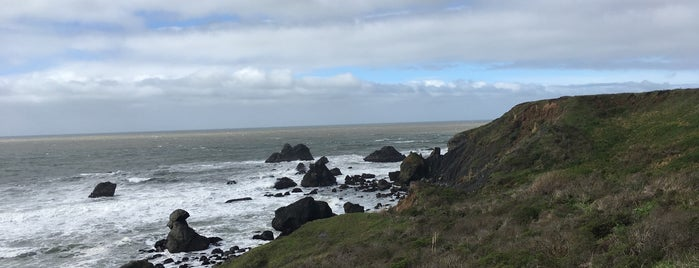 Shell Beach is one of Sonoma Coast.