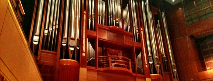 Morton H. Meyerson Symphony Center is one of Dallas Outings.
