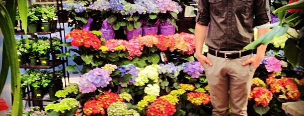 Plant Depot is one of Great Orange County Garden Centers.