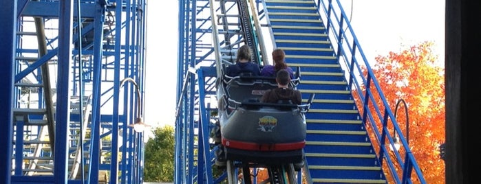 Wild Mouse is one of Favorite Arts & Entertainment.
