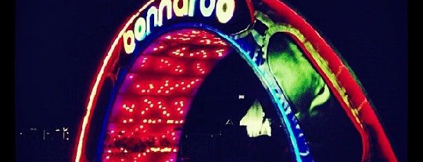 Bonnaroo Music & Arts Festival is one of Festivales.