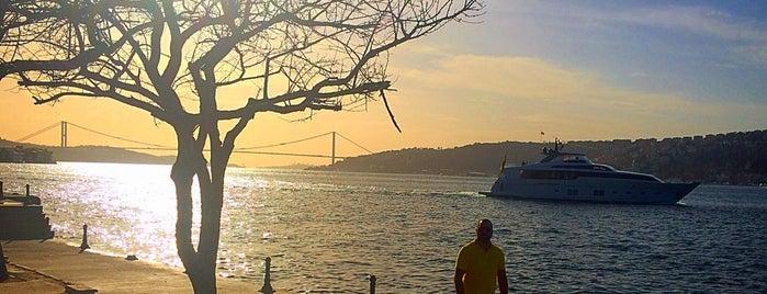 Vaniköy Parkı is one of İstanbul'daki Park, Bahçe ve Korular.