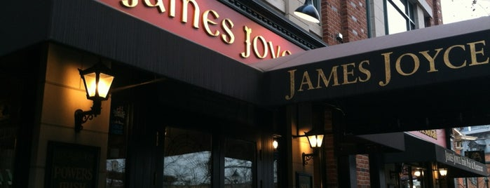 James Joyce Irish Pub is one of Pubs Breweries and Restaurants.