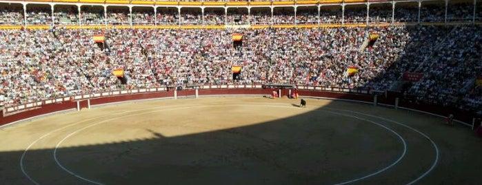 Plaza de Toros de Las Ventas is one of Conoce Madrid.