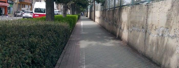 Basın Şehitleri Caddesi is one of Eskişehir'deki Caddeler.