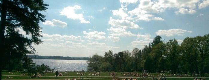 Pyynikin uimaranta / Rosendahlin ranta is one of Harrasteet, puistot & muut mestat.