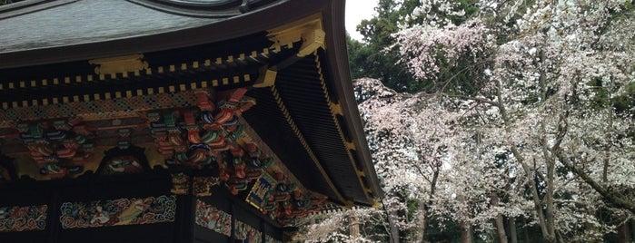 Zuihoden is one of 中世・近世の史跡.
