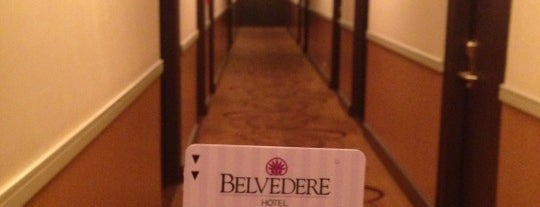 The Belvedere Hotel is one of Great Places.