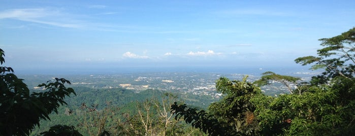 Mountain View Nature's Park is one of Certified Cebu.