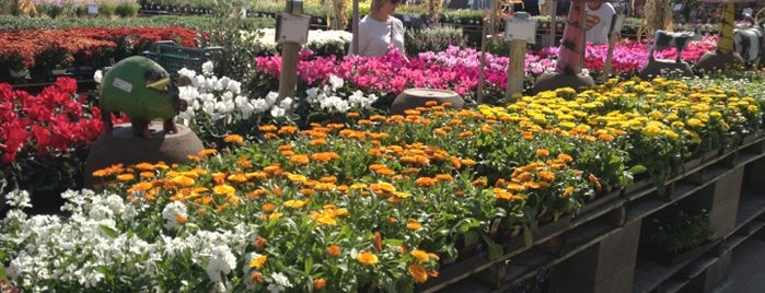 Superior Green Acres Nursery U0026 Supply Is One Of The 15 Best Places With Gardens In  Sacramento