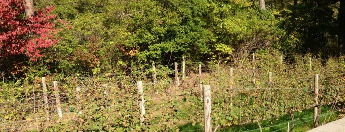 Solomons Island Winery is one of Wineries.