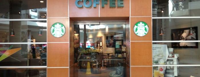 Starbucks is one of Guide to Wellington's best spots.