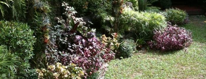 Maimee's Garden Café is one of Guide to San Juan.