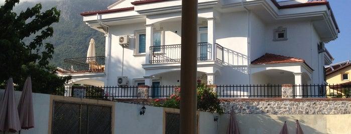 Sunface Hotel is one of Turkiye Hotels.