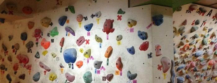 Fitness Climbing Studio LAGO is one of クライミングジム.