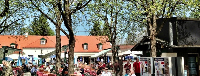 Königlicher Hirschgarten is one of The 15 Best Places That Are Good for Singles  in Munich